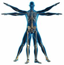 physical-therapy-houma